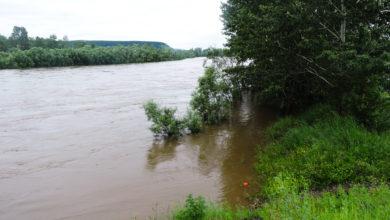 Photo of В селе Мельница провалилась дорога